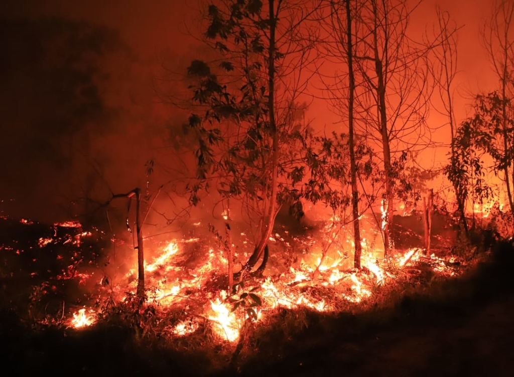 Riau fire the size of Tampines & Bedok was burning this month